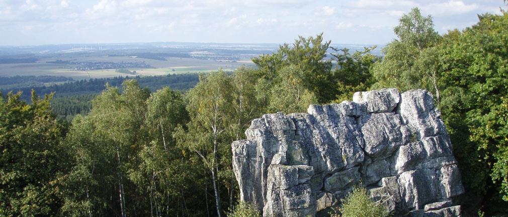 soonwald